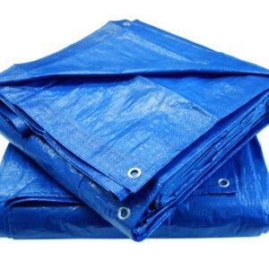 Grip-Rite Blue Economy Tarp ETARP3050