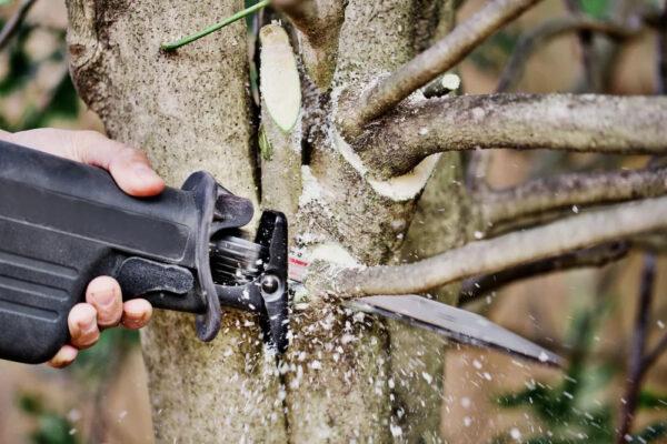 Diablo-12-in.-fleam-ground-recip-blade-for-pruning-DS1205FG-ABM-Distributing Inc.